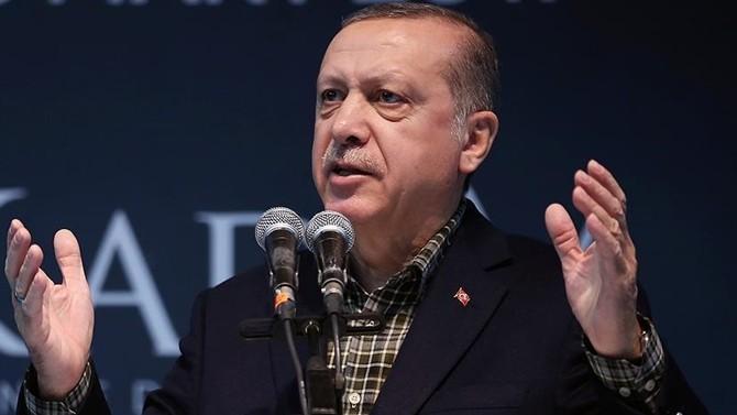 Erdoğan, Almanları 'Nazi'ye benzetti