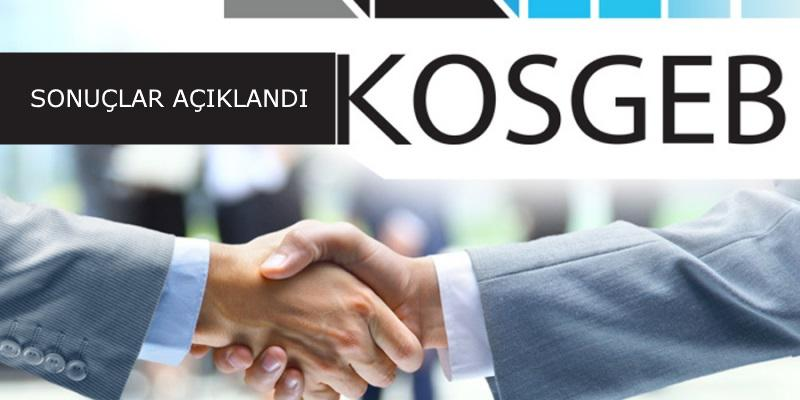 KOSGEB 0 Sıfır Faizli 50 Bin TL Kredi Başvuru Sonuçları 2017 Açıklandı
