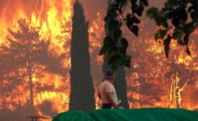 Manavgat yangını son durum Antalya son dakika haber