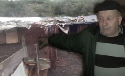 Kayabaşı'nda 150 keçisi çalınan ailenin ocağı söndü